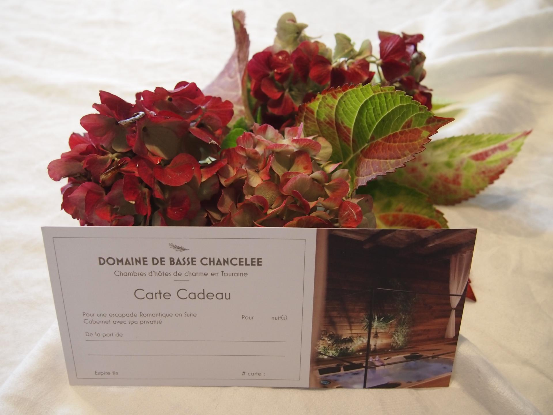 Carte cadeau Domaine de Basse Chancelee 2020